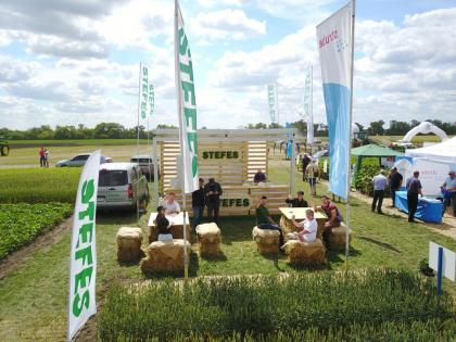 International Field Days Ukraine 2017